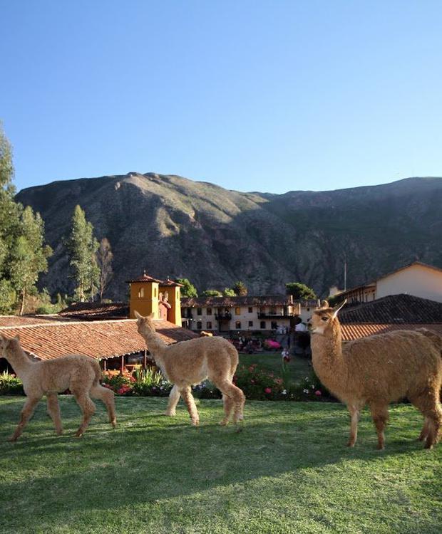 Jadin Yucay Sonesta Hotel Posadas del Inca Yucay Yucay, Peru